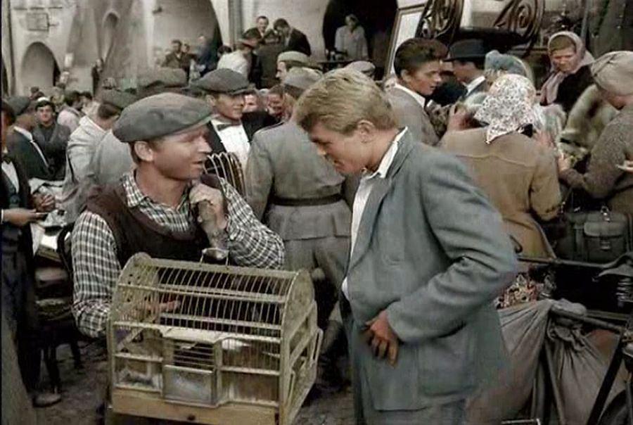 Ryszard Kotys jako sprzedawca kota
