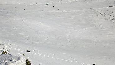 Turyści zjechali ze szczytu w Tatrach na workach na śmieci