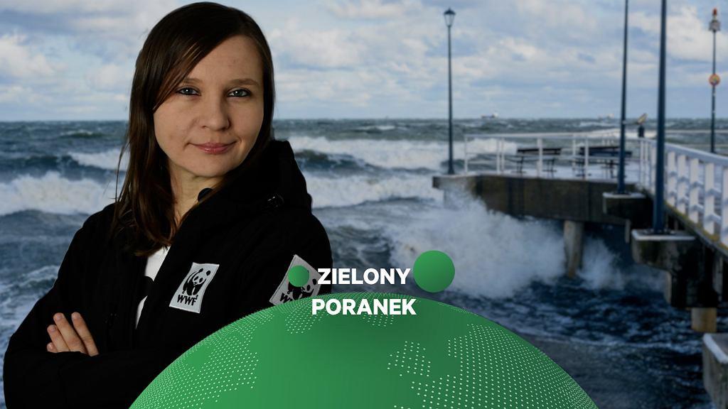 Anna Sosnowska w Zielonym Poranku Gazeta.pl