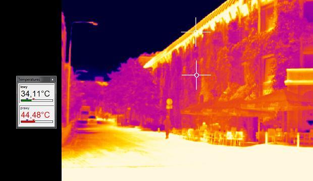 Budynek Biblioteki Uniwersytetu Warszawskiego jest częściowo osłonięty bluszczem. Liście odbijają promieniowanie słoneczne i powstrzymują nagrzewanie się. Ta część fasady ma 34 stopnie, a odkryta - 44