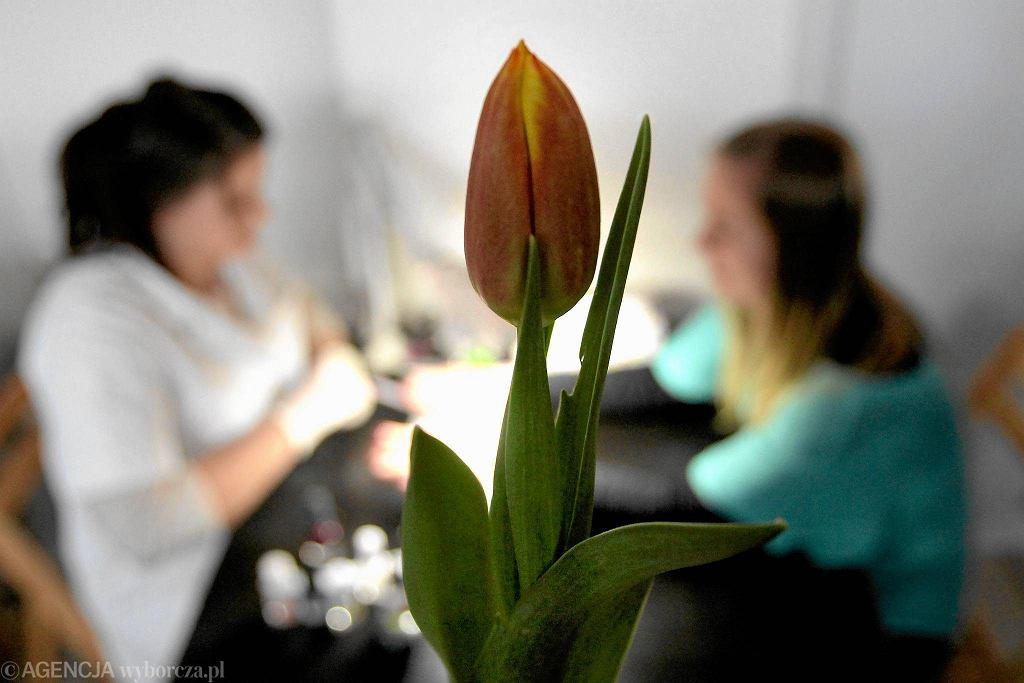 Z okazji Dnia Kobiet piłkarze GKS-u Tychy wręczali paniom tulipany