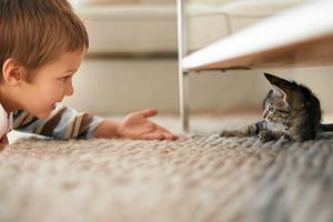 Dzieci wysoko wrażliwe - sprawdź, czy ta cecha dotyczy także twojej pociechy