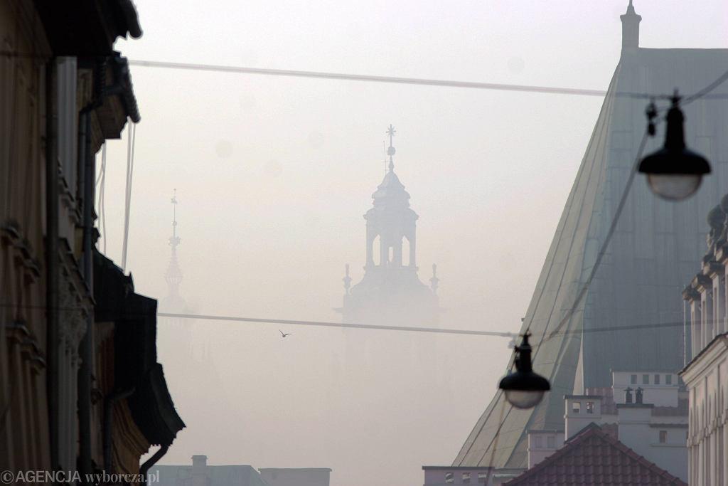 Smog na Wawelu.