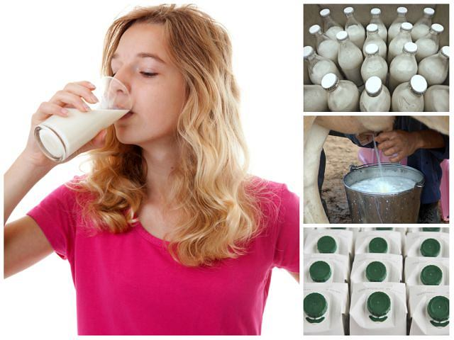 Które mleko jest zdrowsze i bardziej trwałe - prosto od krowy czy ze sklepowej póki?