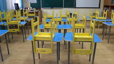 Kiedy klasy 1 3 wrócą do szkoły? Wirusolog prof. Gut: Na tę chwilę nie widzę szans, aby otworzyć szkoły