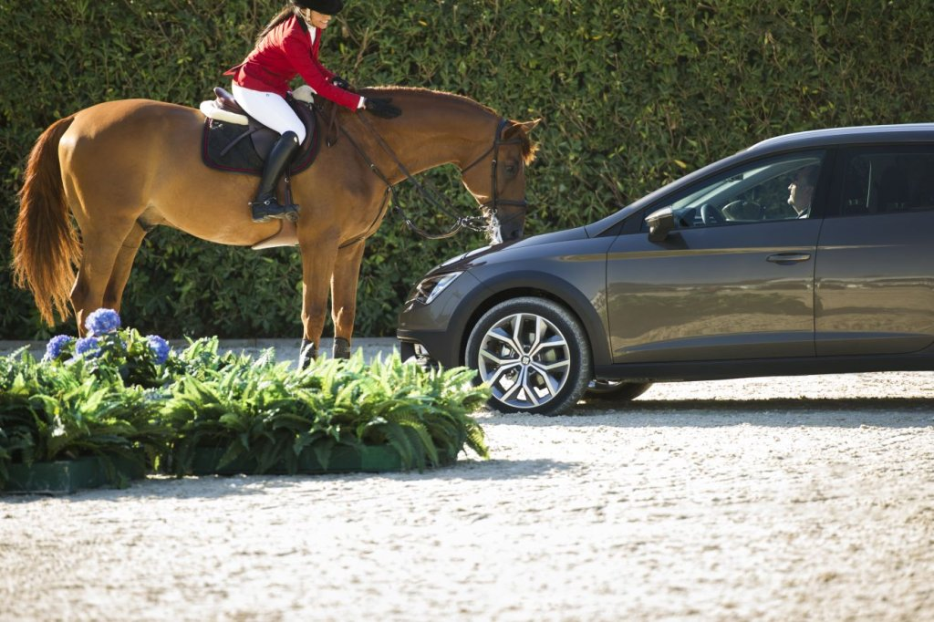 Seat Leon X-Perience vs Koń