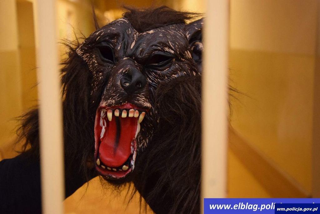 Mężczyzna włamał się do sklepu w masce wilkołaka