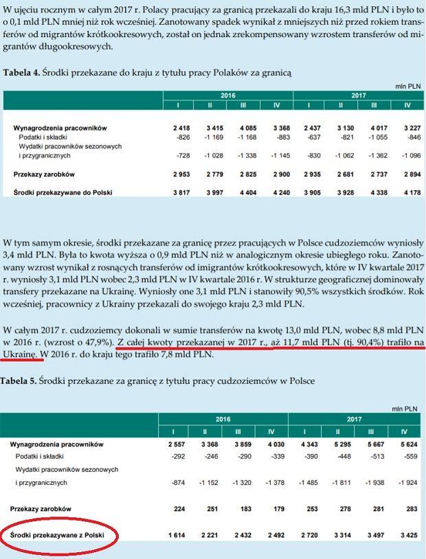 Fragment raportu NBP o transferach zarobków migrantów