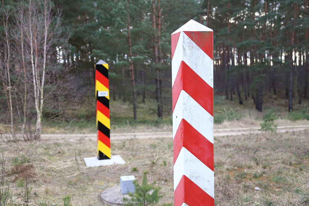 Niemcy stawiają płot na granicy z Polską. 'Ma chronić nasze zwierzęta'
