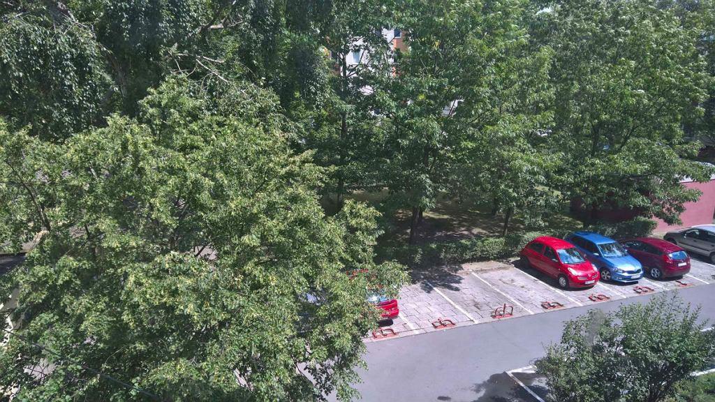 Nasza czytelniczka mieszka na Bielanach. Mieszkanie wynajęła razem z miejscem parkingowym. Jednak spółdzielnia mieszkaniowa zdecydowała, że miejsce na parkingu jej odbierze, ponieważ nie parkuje na nim osobiście właścicielka, a mieszkanie jedynie wynajmuje.