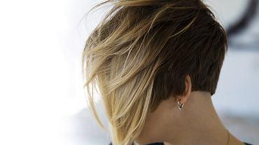 Mini bob fryzura. Modne cięcie, które odejmuje lat i optycznie zagęszcza włosy (zdjęcie ilustracyjne)