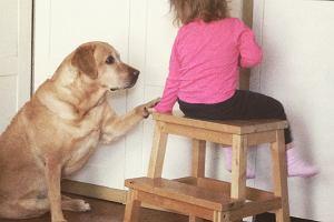 """Pies w prezencie dla dziecka? """"Pomysł najgorszy z możliwych. To rodzic musi być pewien, że chce mieć zwierzę"""" [ROZMOWA]"""