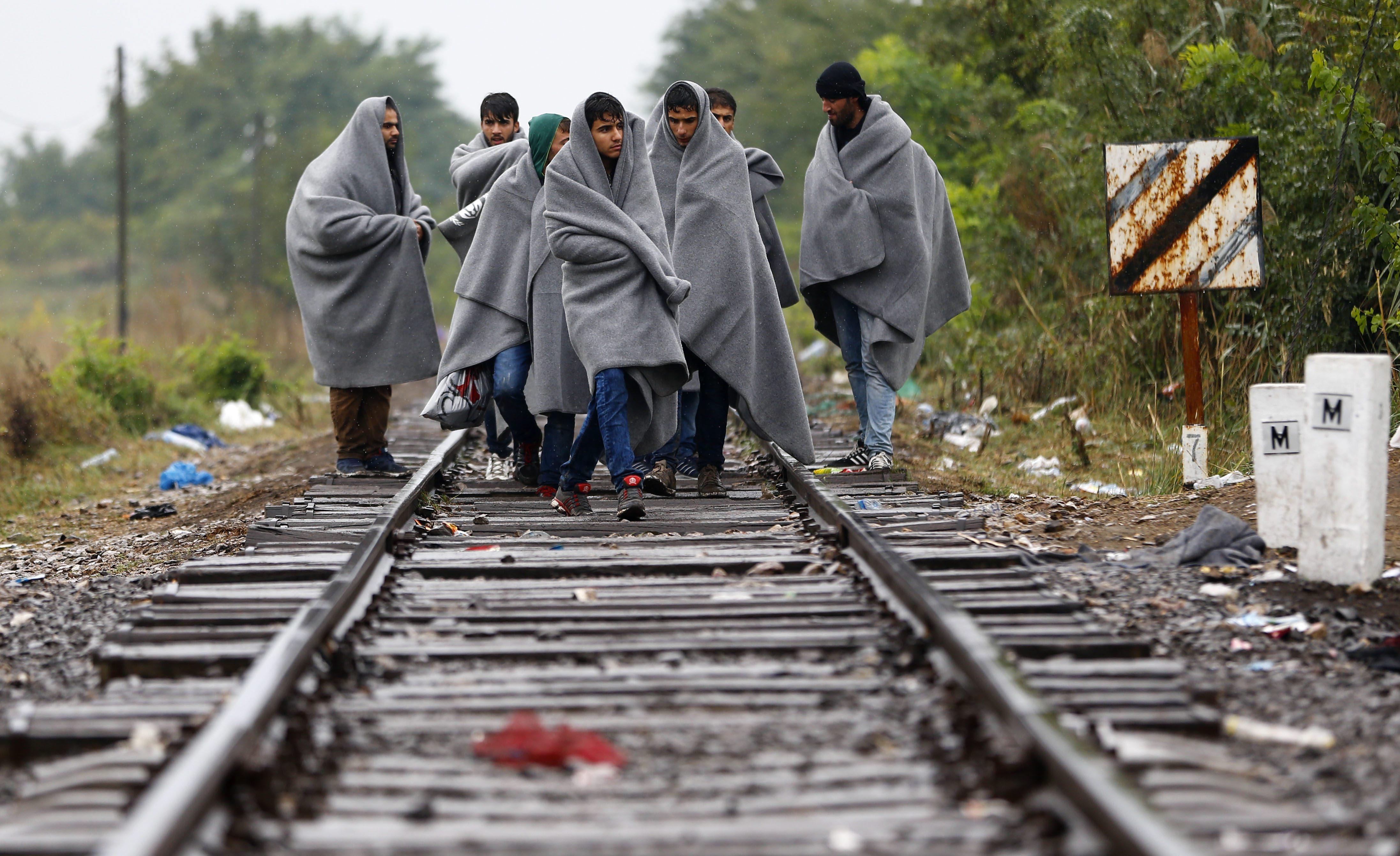 Imigranci w okolicy miejscowości Roszke w południowych Węgrzech (AP Photo/Matthias Schrader)