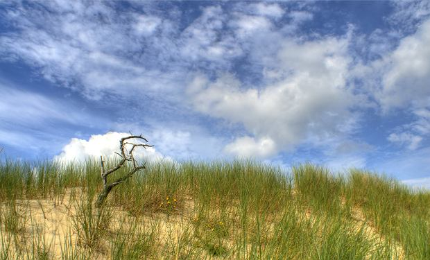 Największa ruchoma wydma w środkowej Europie