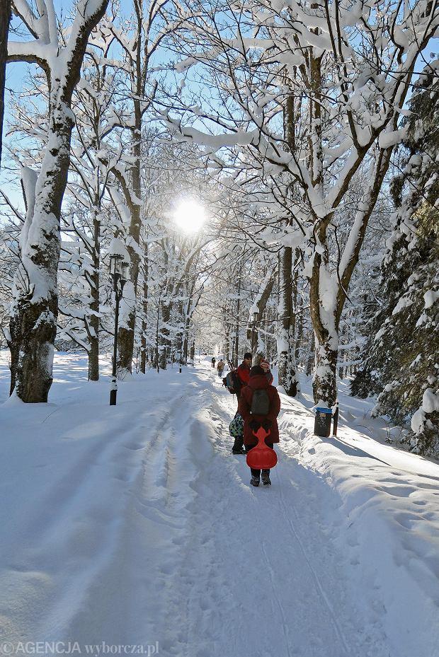 Zdjęcie numer 5 w galerii - Słońce, śnieg i szczyty. Piękna pogoda w Tatrach, zachwycające widoki