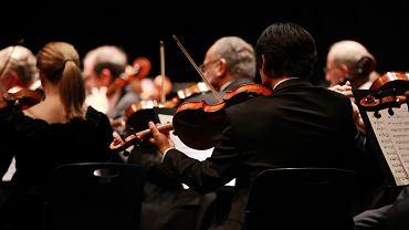 Muzycy (zdjęcie ilustracyjne)