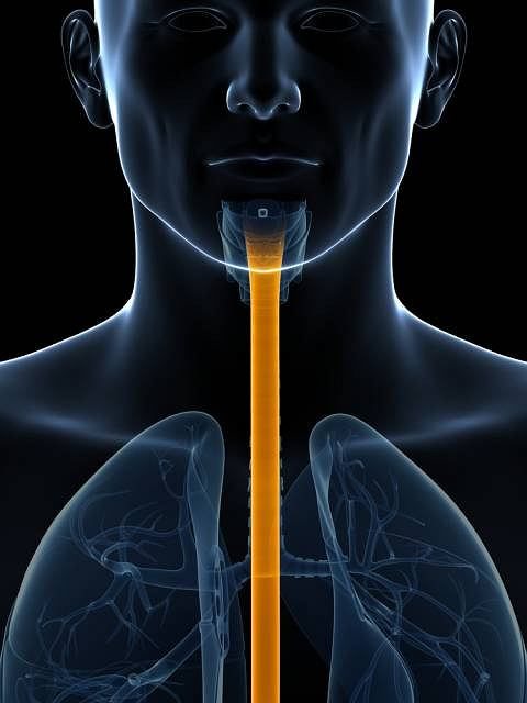 PH- metria przełyku to badanie diagnostyczne wykonywane przede wszystkim u pacjentów z podejrzeniem refluksu żołądkowo-przełykowego