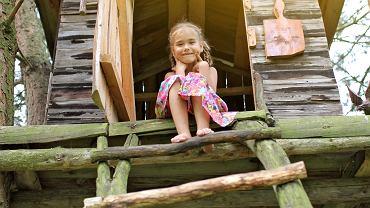 Domek na drzewie to marzenie każdego dziecka. Zdjęcie ilustracyjne, MariaSymchych/shutterstock.com