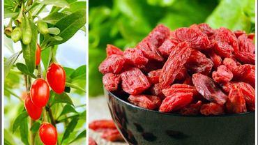 Świeże i suszone jagody goji
