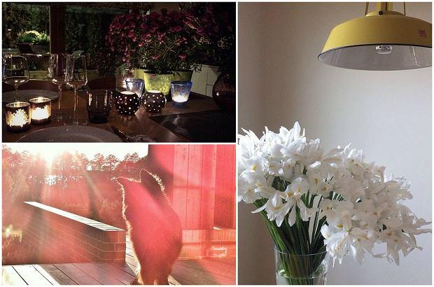Zdjęcie numer 3 w galerii - Aleksandra Kwaśniewska pochwaliła się pięknym salonem, a jak mieszkają inne córki polityków? JEJ dom to prawdziwy pałac