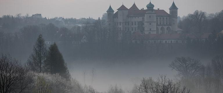 Pogoda. IMGW ostrzega przed mgłą. Widzialność spadnie do 100 metrów