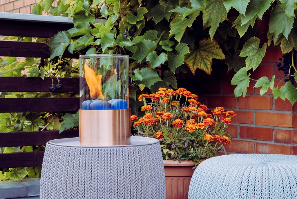 jesienne kwiaty na balkon - aksamitki