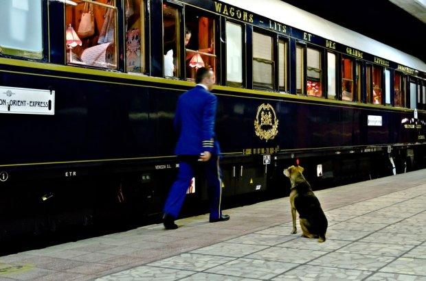 Orient Express na dworcu w Warnie, 6 września 2011 roku, logo z klasą, Pociąg królów: historia Orient Expressu