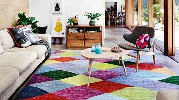 Salon z kolorowym dywanem