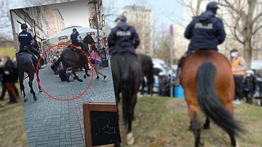 Policja konna