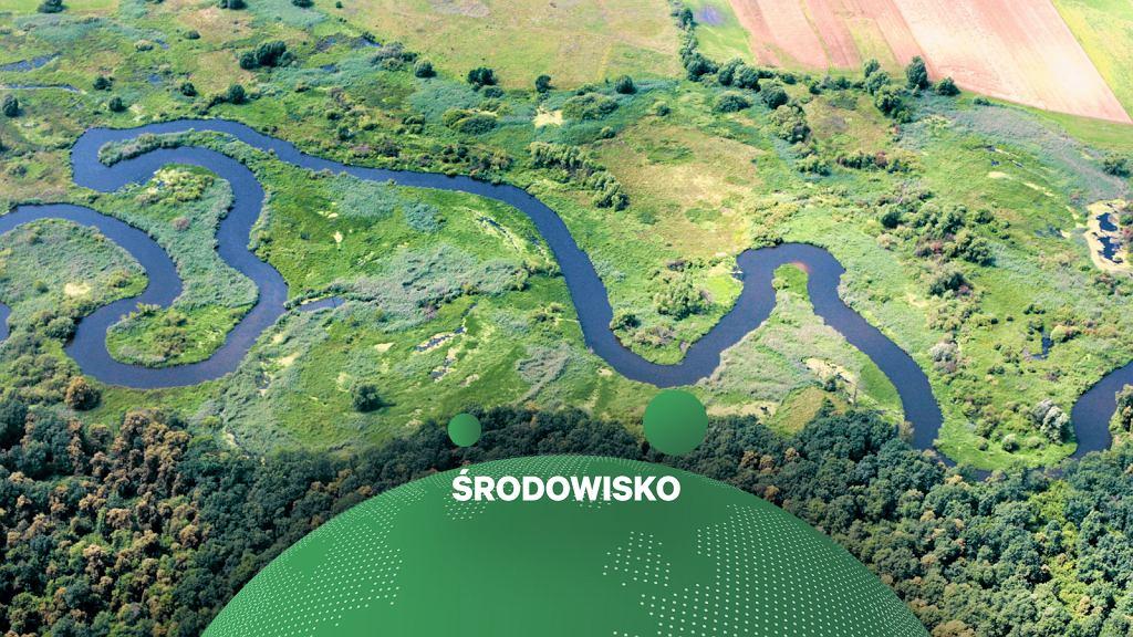 Rolnictwo a jakoś wód. Na zdjęciu rzeka Wieprz w okolicy Świdnika.