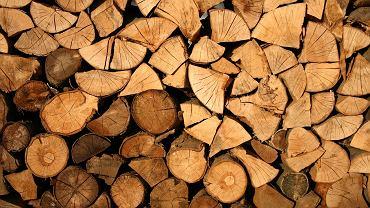 Drewno i płyty MDF drastycznie podrożały. Wzrost cen nawet o 130 proc. (zdjęcie ilustracyjne)