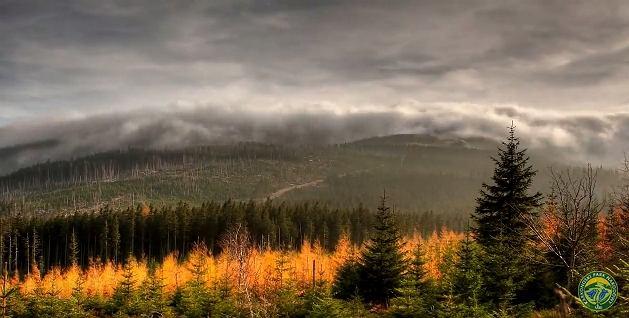 Zdjęcie numer 4 w galerii - Przez 7 lat robił zdjęcia gór. Powstał klip, który pokazuje, za co kochamy Karkonosze