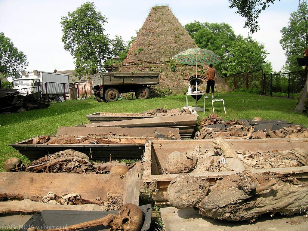 Piramida w Rożnowie, 2006 rok