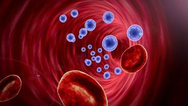 Choroby spirzcheniowe charakteryzują się niedoborem jednego lub kilku enzymów odpowiedzialnych za prawidłowy metabolizm