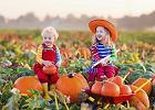 Pierwszy dzień jesieni 2017: kiedy rozpoczyna się kalendarzowa, a kiedy astronomiczna jesień