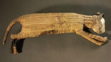 Kocia mumia z ok. 332-30 r. p. n. e. w Muzeum w Luwrze, Paryż