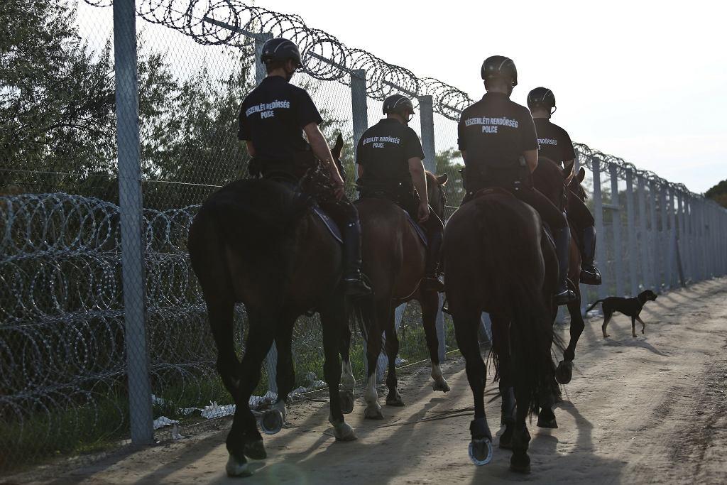 Płot i zasieki z drutu kolczastego na granicy Serbii i Węgier. Roszke, 14 września 2015
