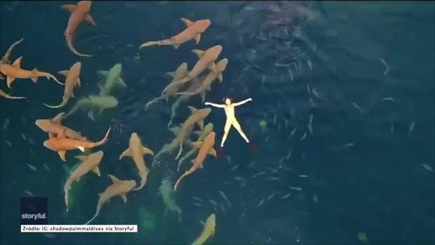Niesamowity widok. Turystka postanowiła popływać wśród rekinów