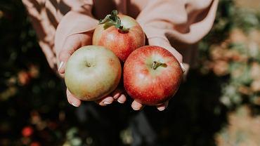 jabłka mogą pomóc w zrzuceniu zbędnych kilogramów
