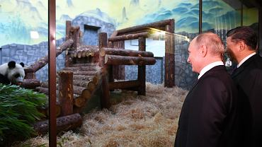 5.06.2019, prezydent Chin Xi Jinping i prezydent Rosji Władymir Putin przed wybiegiem dla pand w moskiewskim zoo.