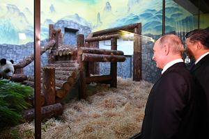 Rosyjskie randki oszukują zdjęcia