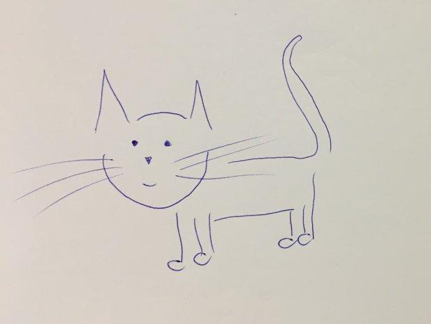 Jak narysować kota? Można schematycznie