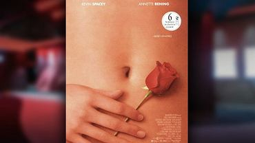 """American Beauty"", plakat"