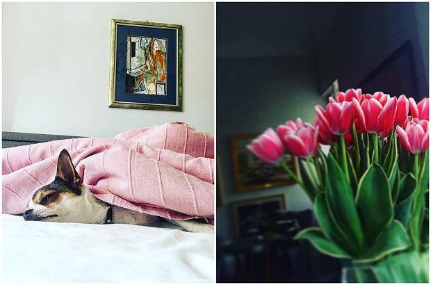 Zdjęcie numer 5 w galerii - Aleksandra Kwaśniewska pochwaliła się pięknym salonem, a jak mieszkają inne córki polityków? JEJ dom to prawdziwy pałac
