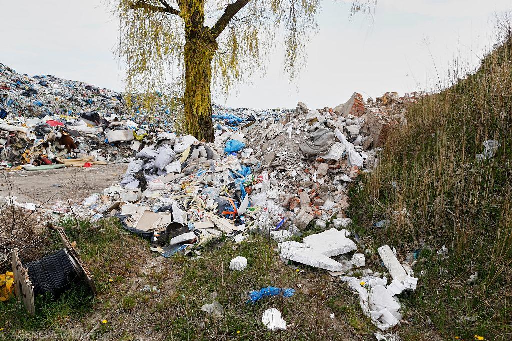 Wysypisko śmieci (zdjęcie ilustracyjne)