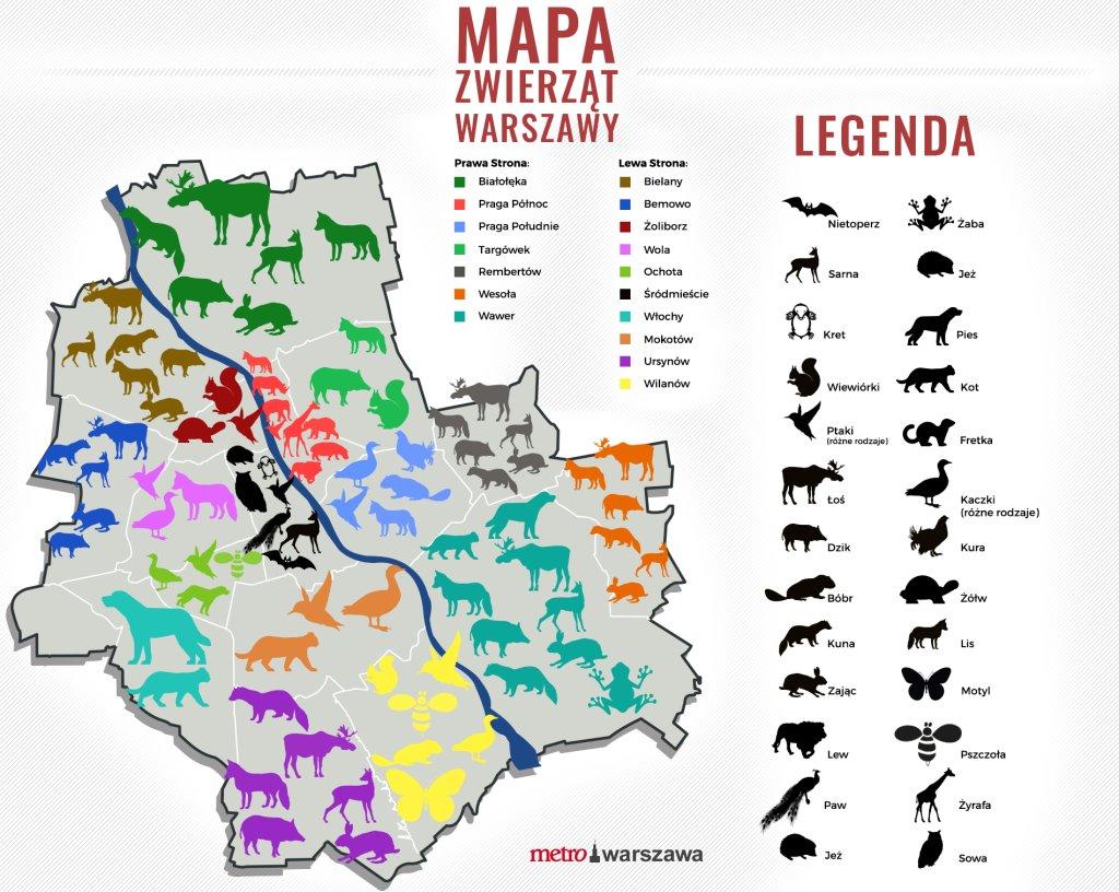 Mapa zwierząt żyjących w Warszawie.