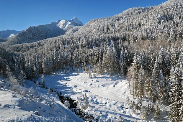 Zdjęcie numer 30 w galerii - Słońce, śnieg i szczyty. Piękna pogoda w Tatrach, zachwycające widoki