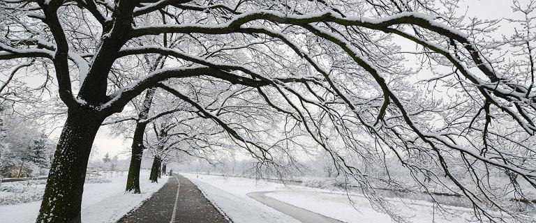 Pogoda w Polsce. Nadchodzi atak zimy. Śnieg i fala zimna w całym kraju