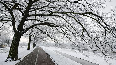 Nadchodzi atak zimy w Polsce