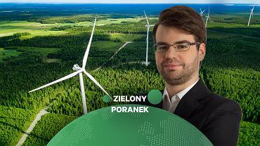 Zielony Poranek Gazeta.pl